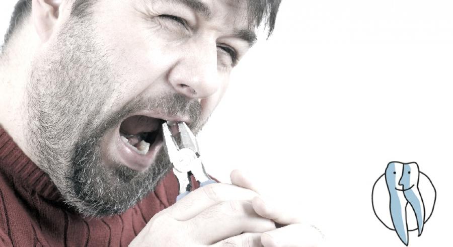 Zahn Ziehen Katze Kosten